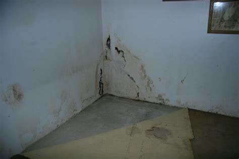 building supplies moisture damage the lumber guys