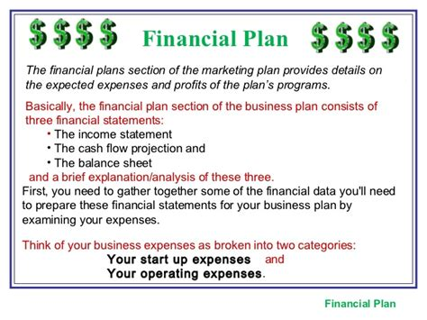 Financial Section Business Plan by The Marketing Plan