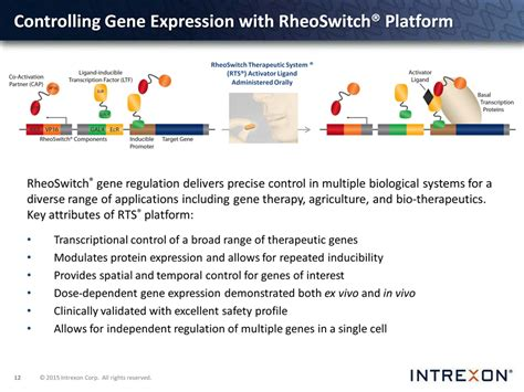 section 11 1 control of gene expression logo