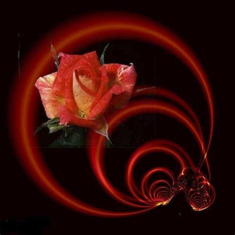 imagenes con movimiento para niños fant 225 sticas imagenes lindas de rosas para mujeres bellas