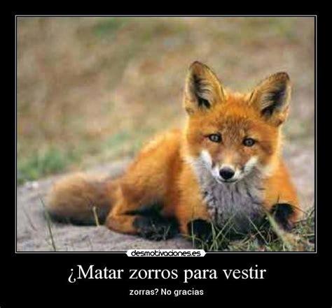 Imagenes De Zorros Tristes | im 225 genes y carteles de zorros desmotivaciones