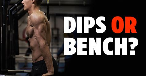 bench dips chest why dips are the best chest exercise