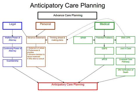 care pathway template image collections templates design