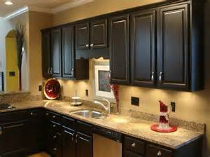Painting Kitchen Cabinets Dark Brown by Kitchen Customization Painted Kitchen Cabinets Midcityeast