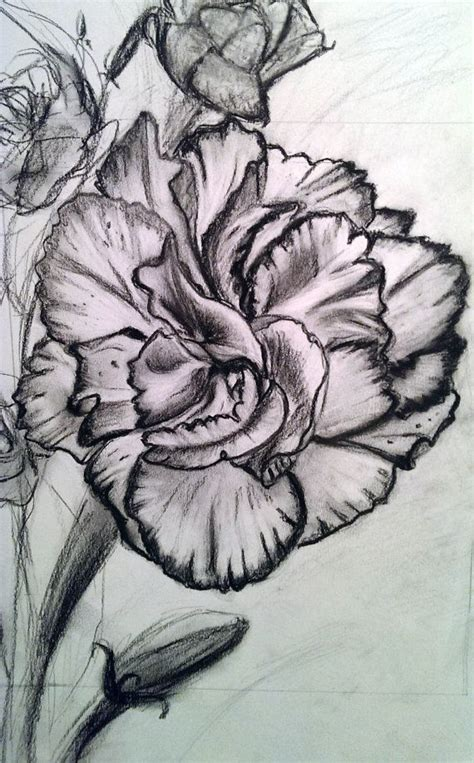 pink carnation tattoo design best 25 carnation ideas on carnation