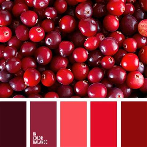 red color combination best 25 red color combinations ideas on pinterest red