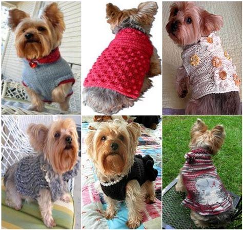 knitting pattern dog jersey best 25 dog sweaters ideas on pinterest dog sweater