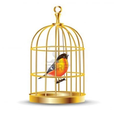 Bird In A Cage easy way a for children let me free