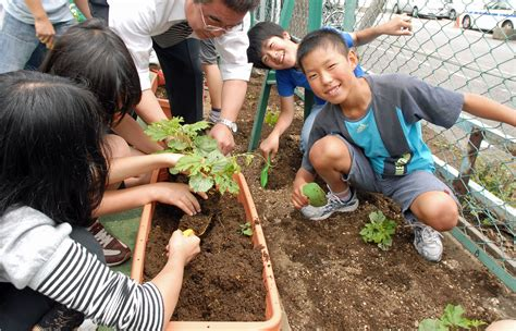 why in japanese japanese for children why are japanese children the healthiest in the world