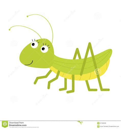 imagenes animados de insectos saltamontes personaje de dibujos animados lindo fondo