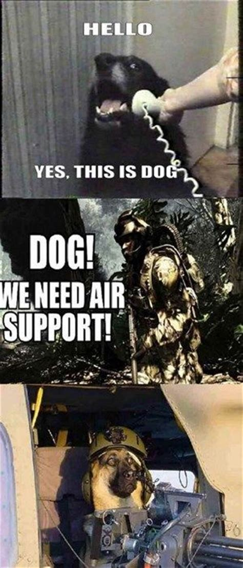 Call Of Duty Dog Meme - 11 best images about memes and lols on pinterest warfare