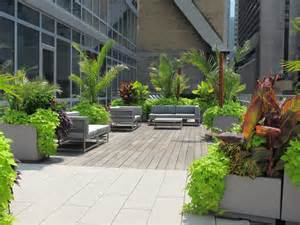 roof deck garden tropical roof deck city gardens of ny