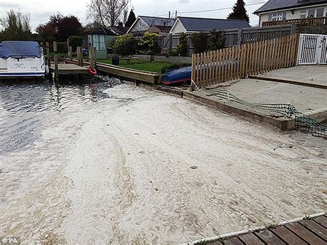 thames river sewage thames water fined 163 20m for polluting river thames daily