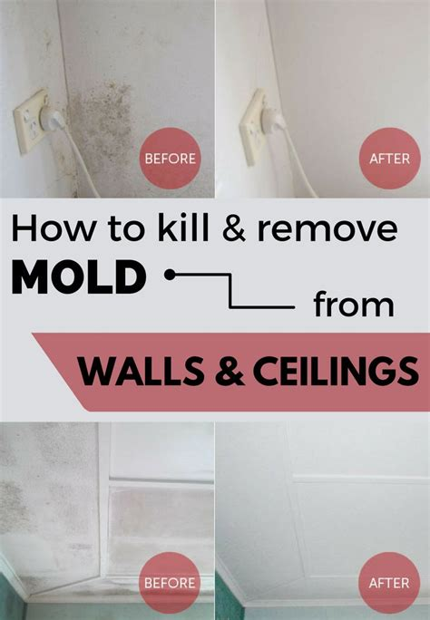 How To Remove Mildew From Ceiling In Bathroom by 25 Best Ideas About Remove Mold On Grout And Mould Removers Diy Mould Removal And