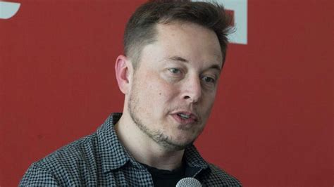 elon musk vision statement elon musk s solar vision could be killed off by investment