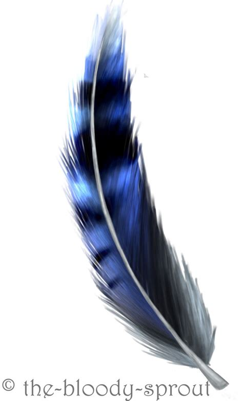 blue jay feather tattoo blue feather drawing randoms feathers