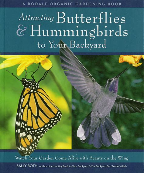 Attracting Butterflies And Hummingbirds To Your Backyard