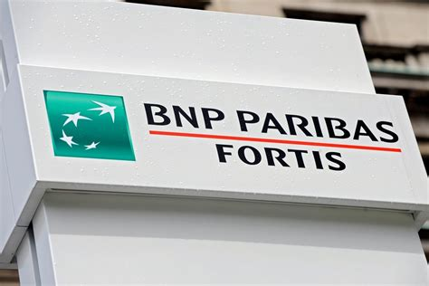 fortis bank banking bnp paribas fortis bank to pay the price for risky