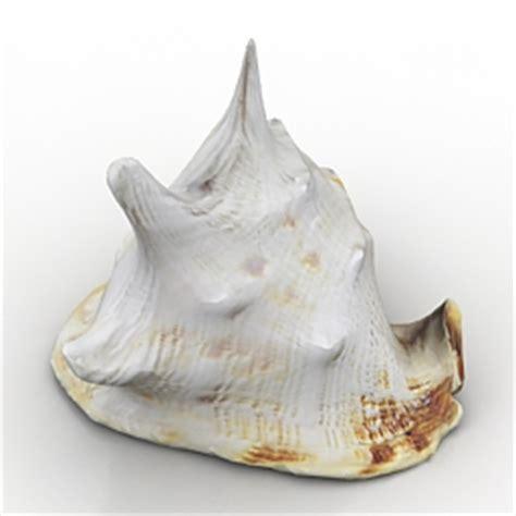 Shell 3d Model Free