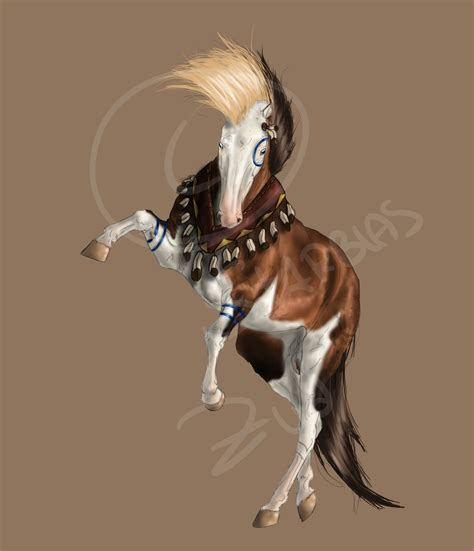 image gallery indian horse drawings