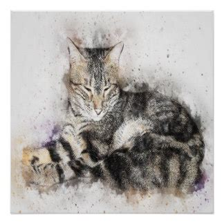 Cat Poster Asturo 12 Warna hang in there cat posters zazzle au
