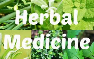 What is herbal medicine braziers park