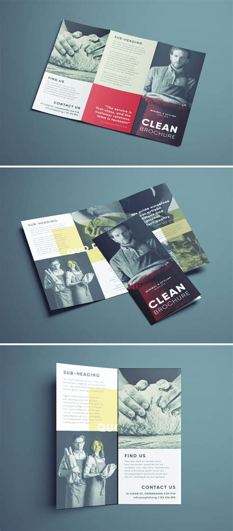 brochure templates free download indesign amazing clean trifold brochure template free