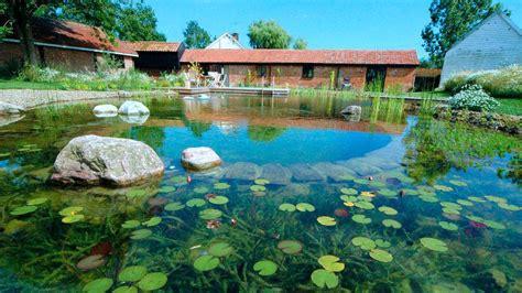 Merveilleux Piscine Jacques Brens #6: 07476401-photo-piscine-naturelle.jpg