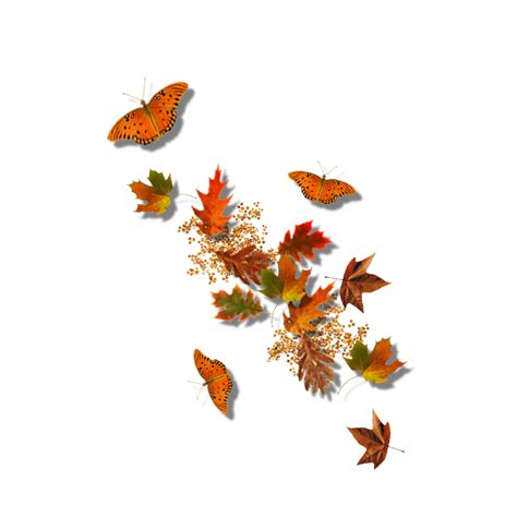 Tapis De Fleurs 942 by The Gallery For Gt Falling Leaves Gif Transparent