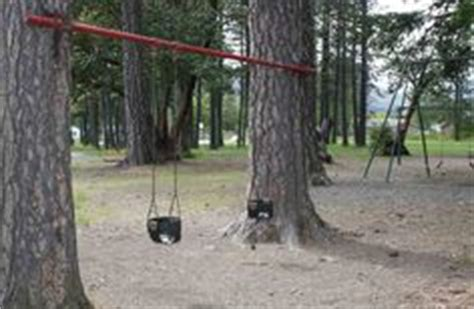how to build a swing between two trees 1000 images about tree swings and things on pinterest