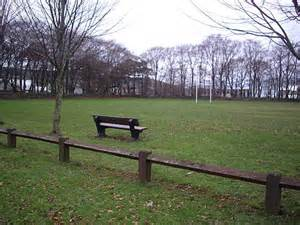 bench and field playing field and bench 169 stanley howe cc by sa 2 0