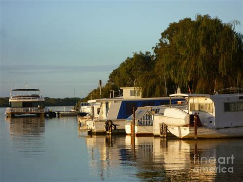 house boats on the murray river houseboats on the murray river painting by susan lord