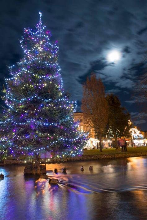 who introduced xmas trees to britain tree in the river bourton on the water smiles trees