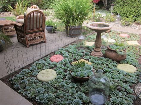 Sukkulenten Garten by Tabarracci Succulent Cutting Gardens