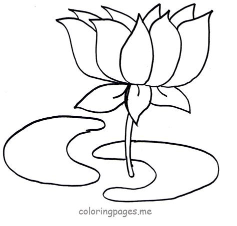 Lotus Clipart Colouring Page Pencil And In Color Lotus Lotus Flower Outline