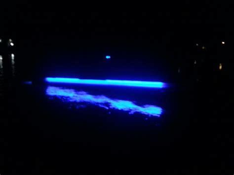 Pontoon Lights by Pontoon Lights Boats