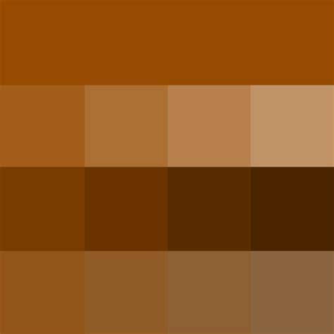 tone color in brown hue tints shades tones hue color