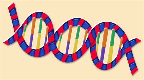 Dna Helix Structure 3d Model How To Make