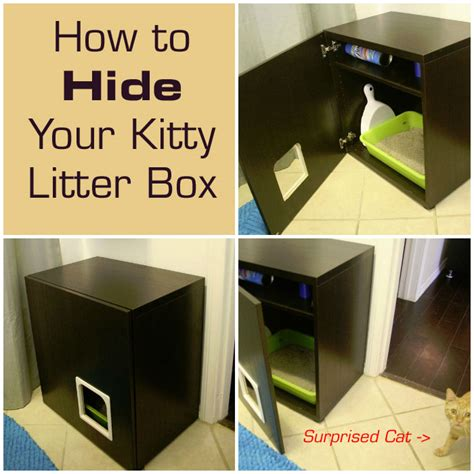 how to litter box a how to build a cat litter box cabinet imanisr