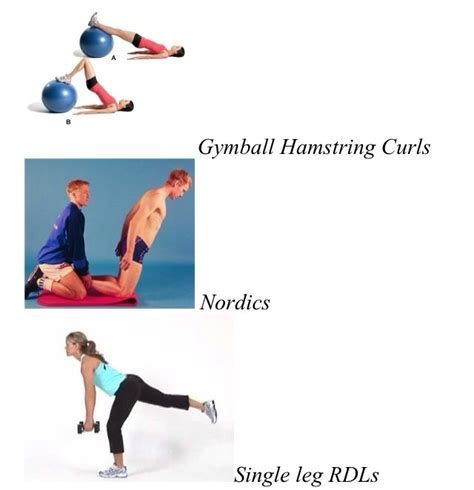 hamstring strengthening exercises at home weight