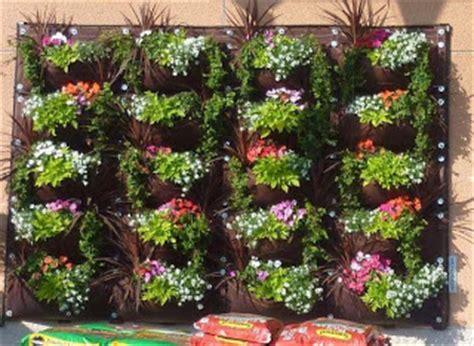 Pupuk Untuk Bunga Seruni cara menata bunga di rak bertingkat cara menanam tanaman