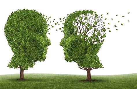 alimentazione per malati di alzheimer alzheimer 600mila malati in italia 11 miliardi per le