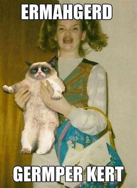 grumpy cat ermahgerd