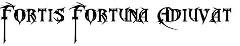 john wick back tattoo font fortes fortuna adiuvat tattoo related keywords fortes
