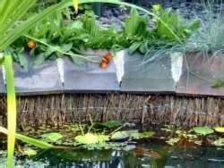 brush wood screen covers exposed pond edge fish ponds