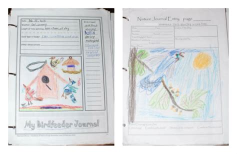printable bird journal exploring nature with kids favorite bird activities free