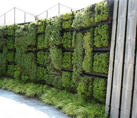 Gorgeous And Useful Herb Wall Gardening Goals Wall Hanging Herb Garden