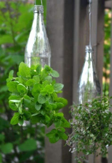 brilliant plastic bottle garden ideas