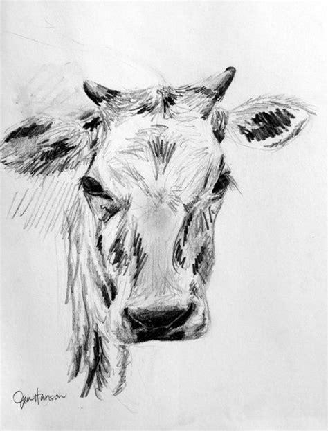 sketches google search animala  sketch