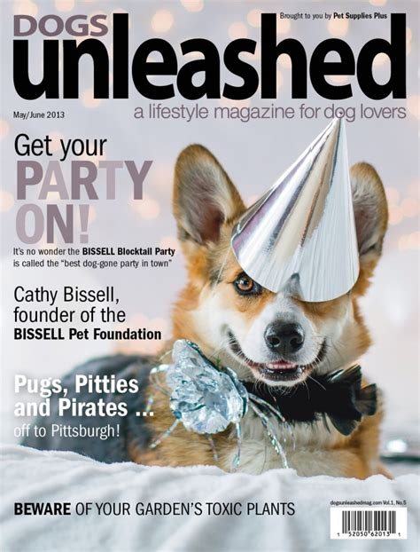 all dogs unleashed how we got the dogs unleashed magazine cover photo shoot grand
